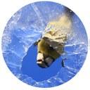 contactus2-01.jpg