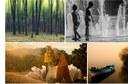 EPA Network collage-01.tif